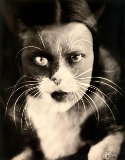 wanda-wulz_io-gatto-cat-i_wa
